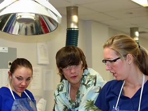 nurse-clinical-experience-83838
